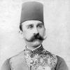 Султанат Египет, Хусейн Камил с 1914 по 1917