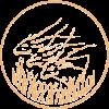 Валютный Союз Экваториальных Африканских Государств с 1958 по 1974